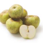 mela-renetta-del-canada