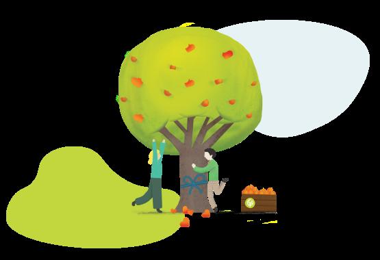 regalare l'adozione di un albero ai tuoi dipendenti